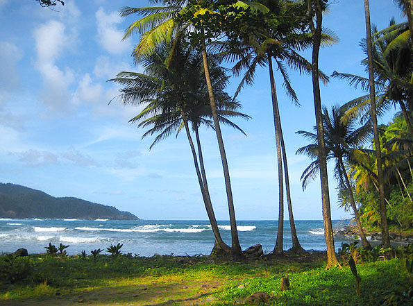 Caribbean Beachfronts - Windy or Not? Windward beachfront land for sale in Dominica.