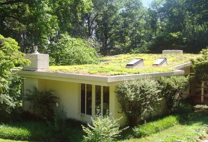 Vegetated Earth Roofs