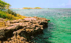 Bahamas Island for Sale