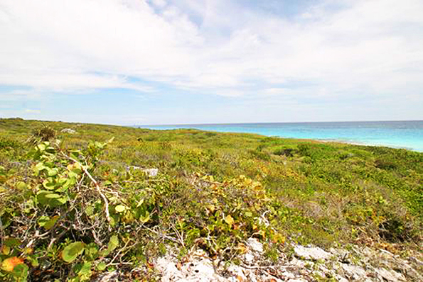 Bahamas Beachfront Land