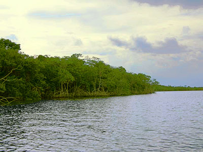 Belize Water Front Land for Sale
