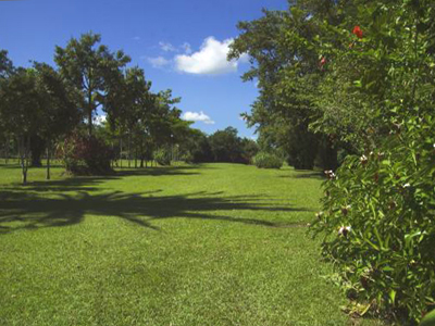 Belize Golf Course For Sale