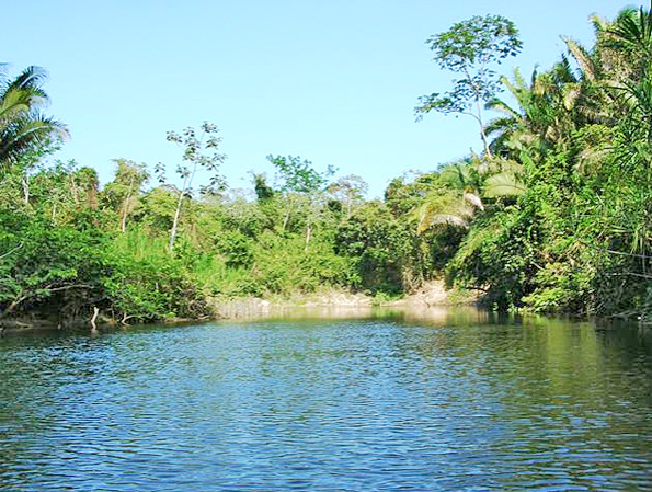 Belize River Front Land