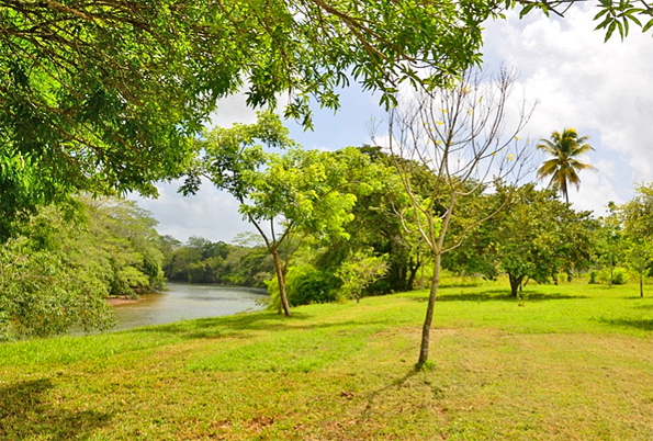 Belize Waterfront Lot