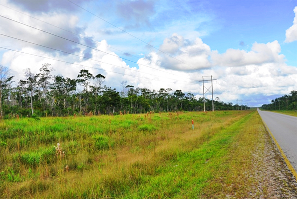 Belize Commercial Land