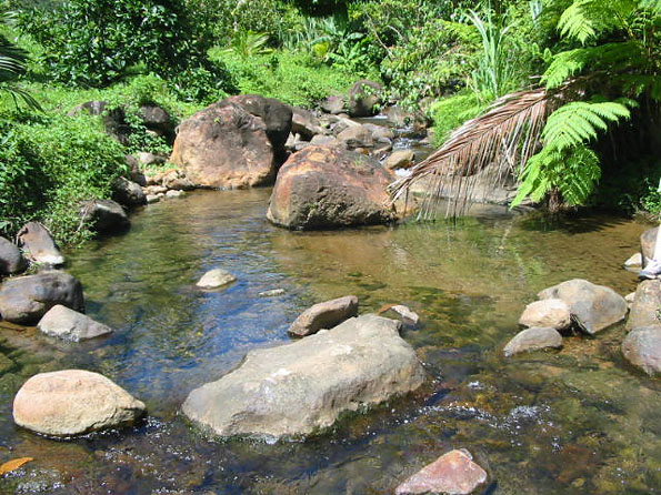 Land for Sale Dominica