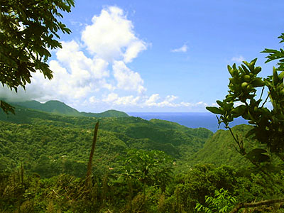 Land for Sale in Caribbean