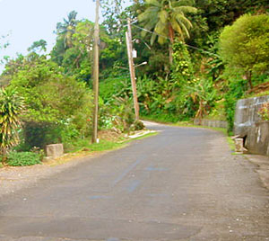 Riverside Property in Dominica