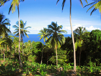 Dominica Ocean View Land for Sale