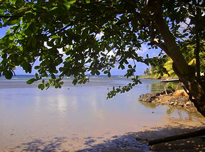 Dominica Beachfront Land