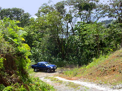 Dominica - Sylvania Home for Sale