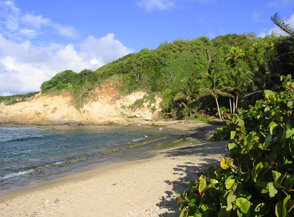 Dominica Pointe Bapiste Land for Sale