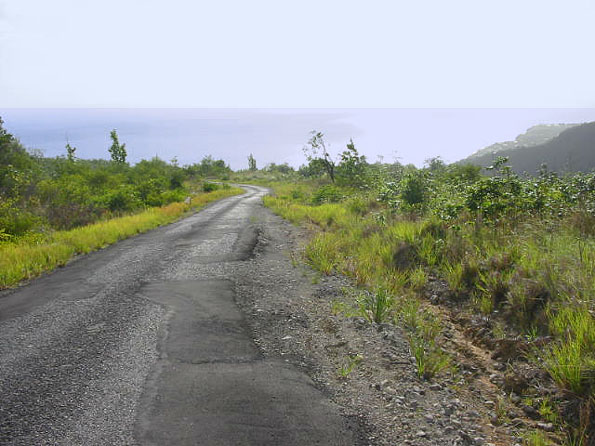 Dominica Moutain View Land for Sale