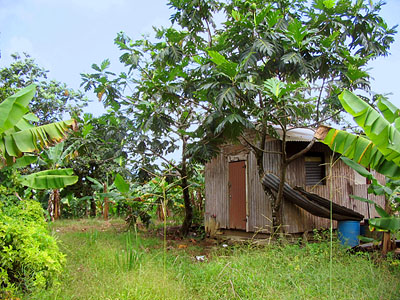 Dominica Affordable Property