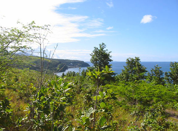 Dominica Lot for Sale