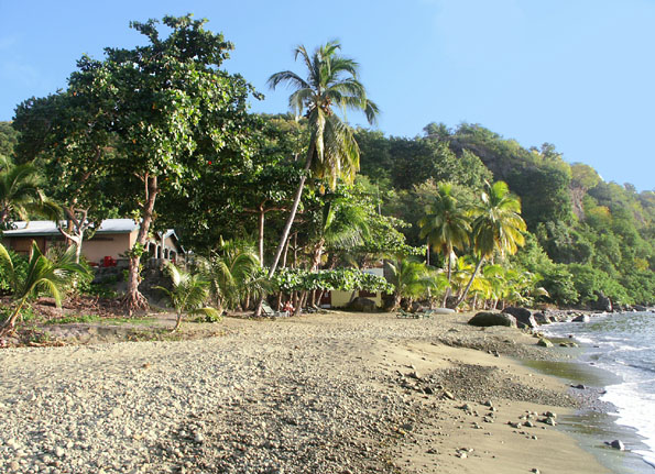 Dominica Resort for Sale