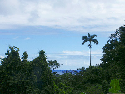 Dominica Cottages for Sale