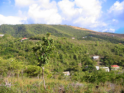 Dominica Coastline Land for Sale