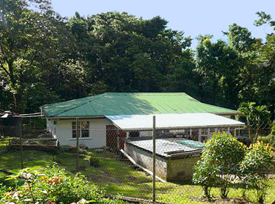 Dominica Bungalow