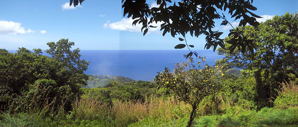 Dominica Land Plot