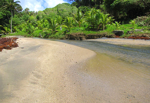 Dominica Beachfront Property