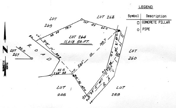 Roseau House Plot