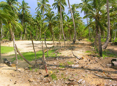 Dominican Republic Land for Sale