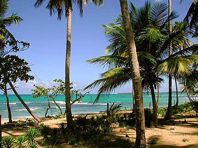 Dominican Republic Beachfront Land
