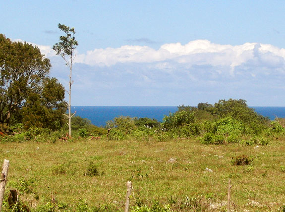 Sea View Land for Sale