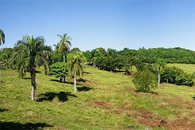 Dominican Republic Land