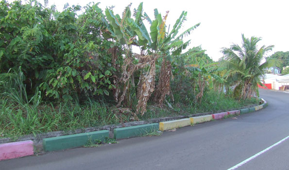 Grenada Land For Sale