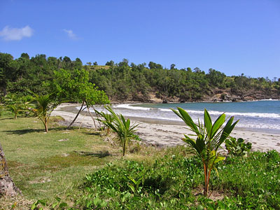 Grenada Beachfront Land