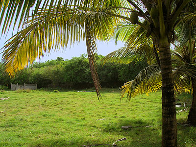 Guadeloupe Land for Sale