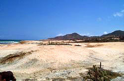 Isla de Margarita Land