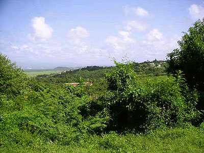 Martinique Land for Sale