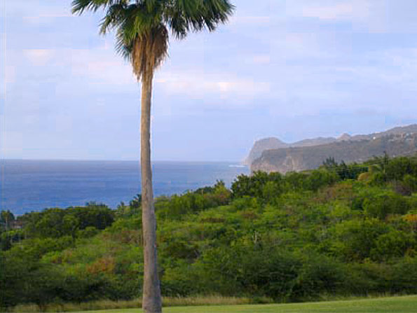 Montserrat Land for Sale