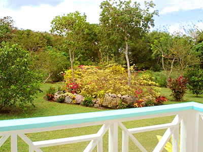 Nevis Home for Sale