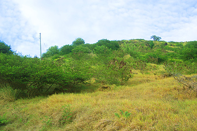 St.Kitts land for sale