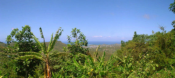 St. Lucia Sea View Property
