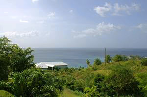 Tobago Real Estate