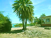 Antigua island for sale
