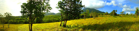 Land for sale on Nevis