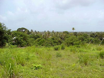 Land for Sale at Bethany, Tobago