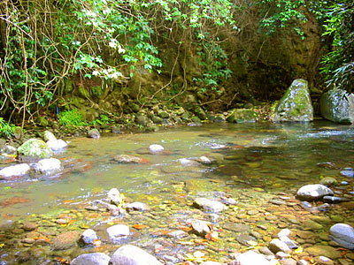 Riverside Land for Sale - Dominica
