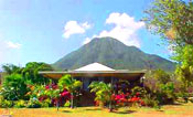 Nevis real estate